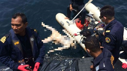 Malaysian divers fish body of Vietnamese fisherman out sunken boat hinh anh 1
