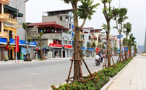 Hanoi to plant 45,000 trees along Thang Long Avenue hinh anh 1