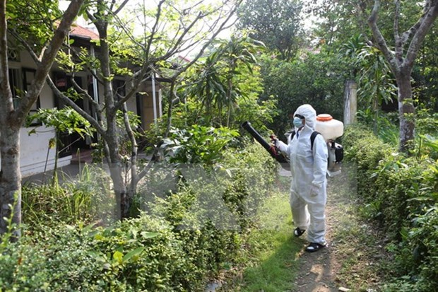 Binh Thuan urged to intensify communication on dengue prevention hinh anh 1