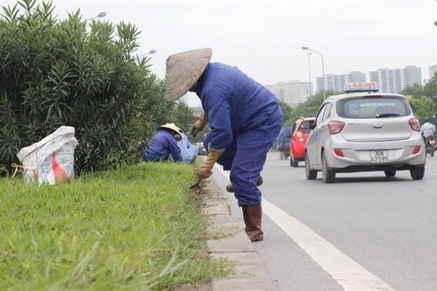 Hanoi to cut 6,000 gardening jobs hinh anh 1