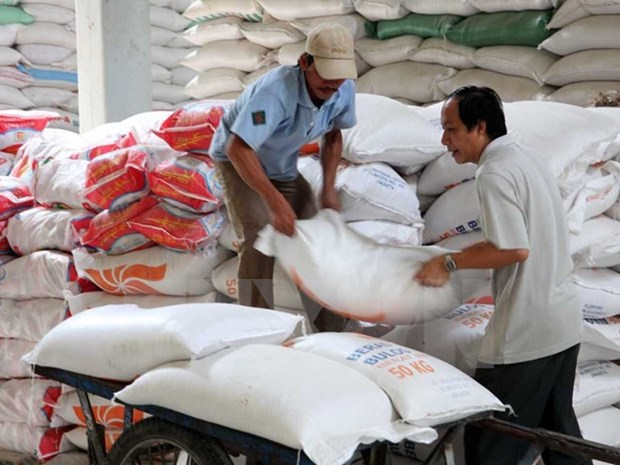 Vietnam's rice exports fall during January-August hinh anh 1