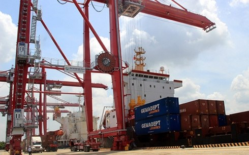 New international container terminal opens in HCM City hinh anh 1