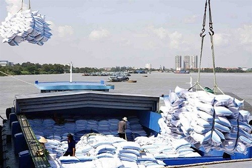 Rice exports expected to fall sharply this year hinh anh 1