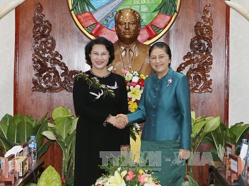 NA leader affirms Vietnam's interest in fostering ties with Laos hinh anh 1
