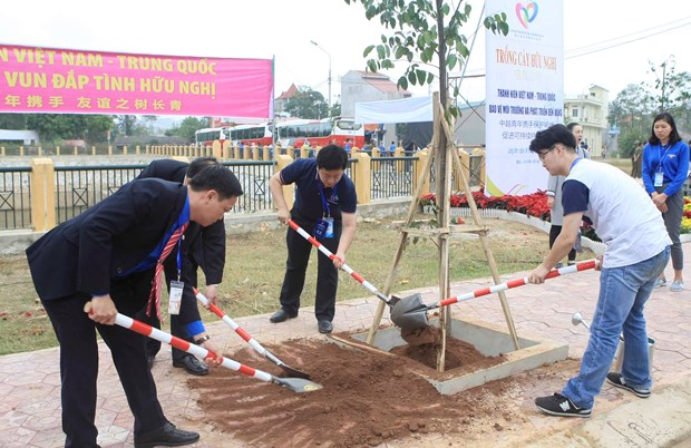 "Youths plant trees to show Vietnam-China ""forever green"" amity hinh anh 1"