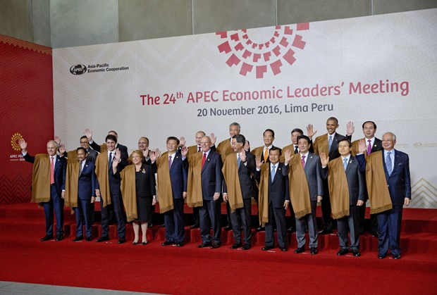 APEC Leaders' Declaration released hinh anh 1