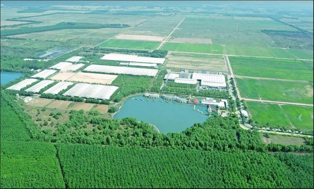 Pioneering role of enterprises in future sustainable agriculture hinh anh 1