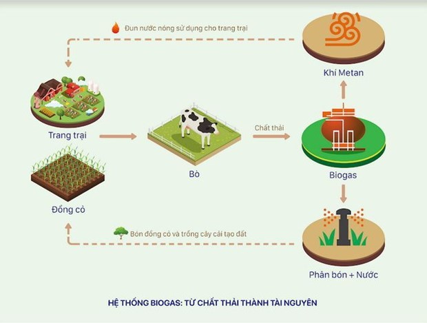 Pioneering role of enterprises in future sustainable agriculture hinh anh 3