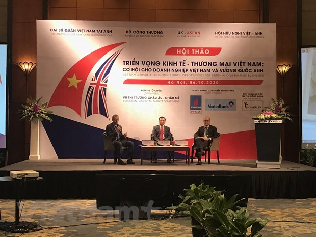 Negotiations on Vietnam – UK FTA expected to be completed at year's end hinh anh 2