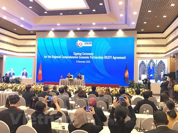 """""""Together with CPTPP, RCEP offers ideal economic models"""" hinh anh 3"""