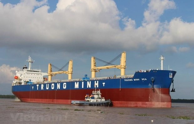 Maritime transport sector: positive growth but unsteady hinh anh 1