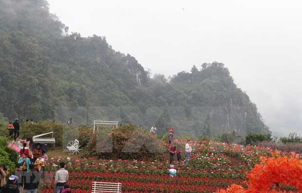 New tourism programmes promise to attract tourists to Yen Bai hinh anh 1