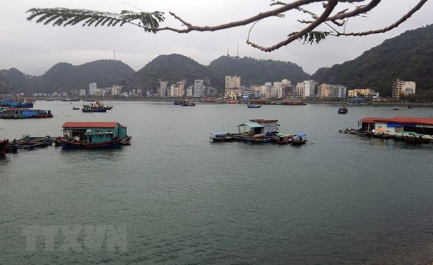 Cat Ba World Biosphere Reserve becomes attractive destination hinh anh 3