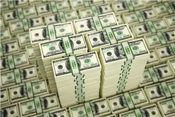 US-dollar loan demand rises hinh anh 1