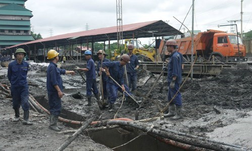 Coal companies post profits despite losses during floods hinh anh 1