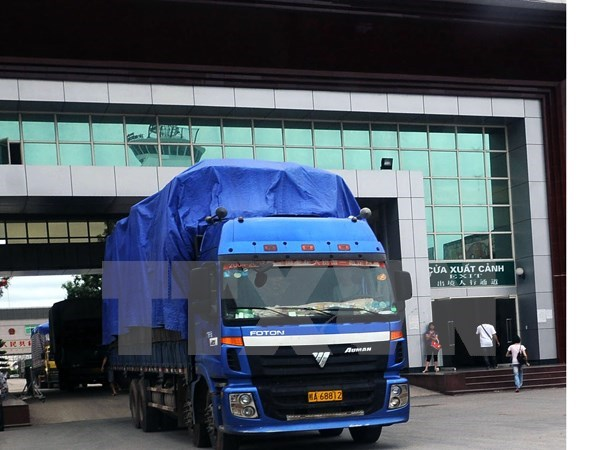 Export-import inspection exposes flaws hinh anh 1
