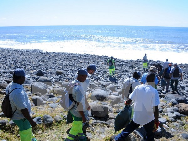 Search for MH370 debris halted in Reunion island hinh anh 1
