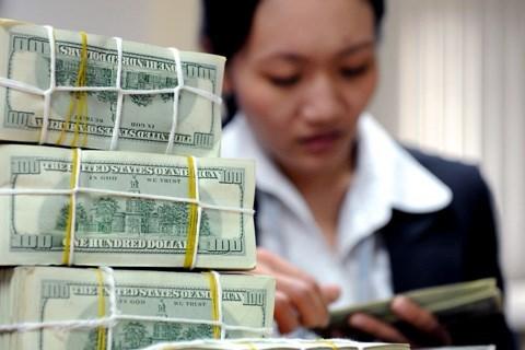US dollar cools down hinh anh 1