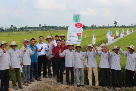 Rice institute teaches 1,000 delta farmers hinh anh 1