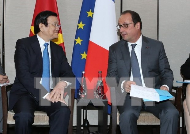 President reiterates importance of ties with France hinh anh 1
