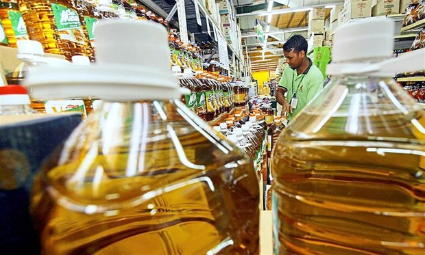 Indonesia, Malaysia to establish palm oil council hinh anh 1