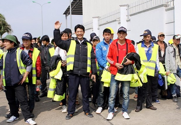 Vietnam takes measure to ensure overseas workers' rights hinh anh 1