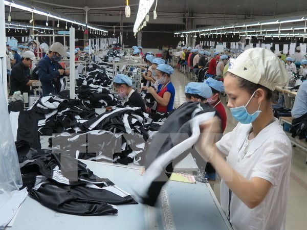 Garment sector forecast to further growth in year-end hinh anh 1