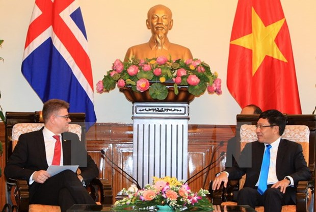 Deputy PM receives Icelandic foreign minister hinh anh 1
