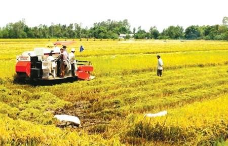 Quality human resources vital for Mekong economy hinh anh 1