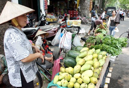Informal labourers need stronger protection hinh anh 1