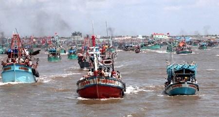 Ca Mau province prioritises sea economy hinh anh 1