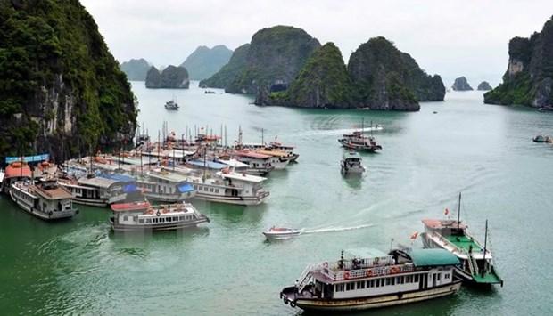 Quang Ninh bans construction of new tourist boats hinh anh 1