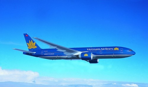 Vietnam Airlines domestic market share plummets hinh anh 1