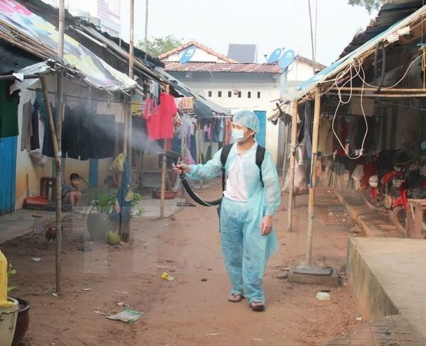 Dengue fever to continue as threat hinh anh 1