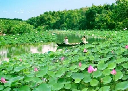 Lang Sen Wetland Reserve becomes Vietnam's 7th Ramsar site hinh anh 1