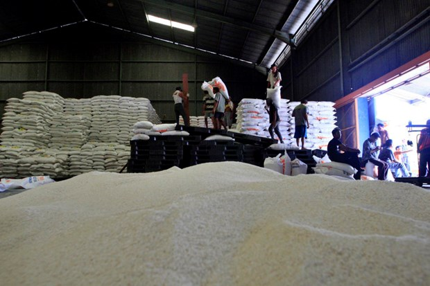 Indonesia purchases rice from Pakistan hinh anh 1