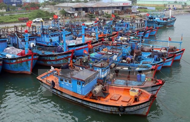 Quang Tri fishing vessels to be equipped with LED lights hinh anh 1