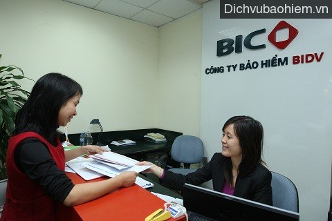 Canadian insurance firm buys 35 percent BIC stake hinh anh 1