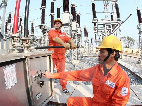 Electricity sector fares well in 2015 hinh anh 1