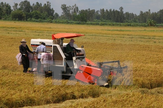 Conference enhances support for farmers hinh anh 1