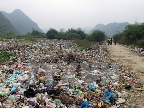 Over 4,600 units, people punished for violating environment rules hinh anh 1