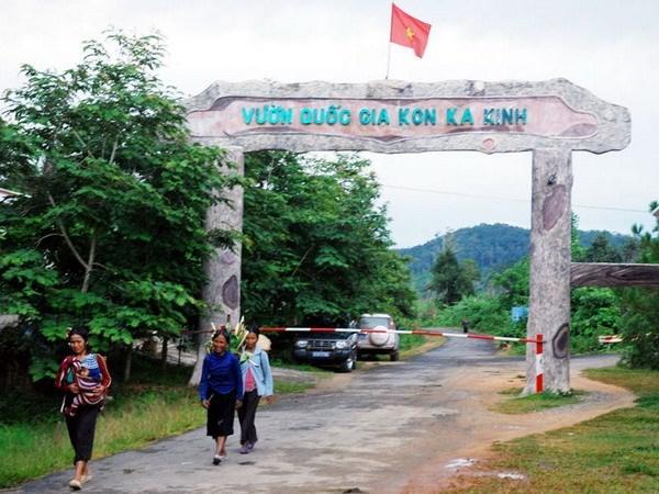 Gia Lai works to preserve Kon Ka Kinh National Park hinh anh 1