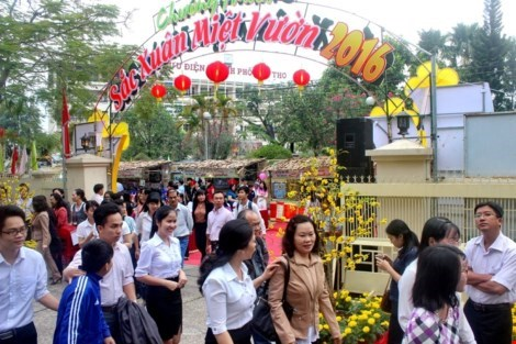 Mekong Delta region's Tet atmosphere spotlighted hinh anh 1