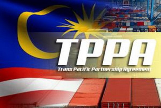 Malaysia's upper house approves TPP deal hinh anh 1
