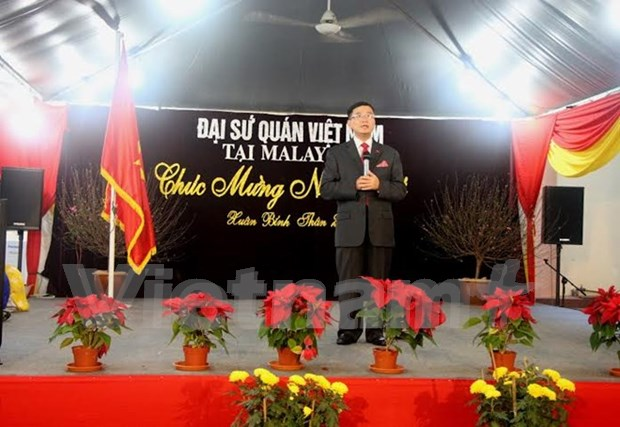 Overseas Vietnamese welcome Lunar New Year hinh anh 1