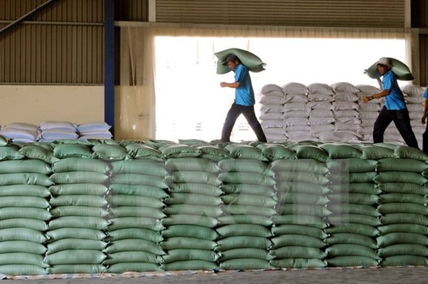 Rice exports increase sharply in January hinh anh 1