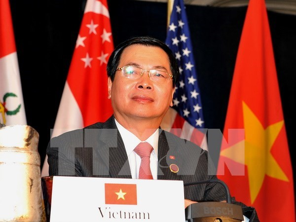 Government issues resolution on TPP signing hinh anh 1