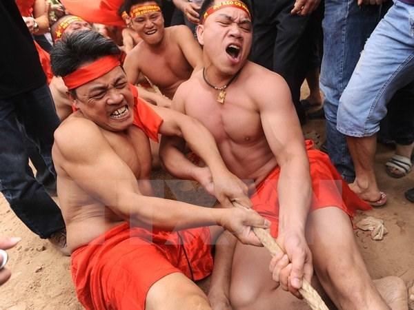Bac Ninh's tug-of-war honoured as national cultural heritage hinh anh 1
