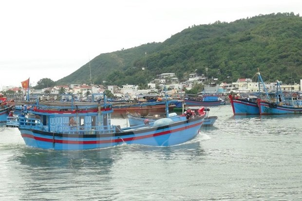 Bac Lieu: fishing boats head for the sea hinh anh 1