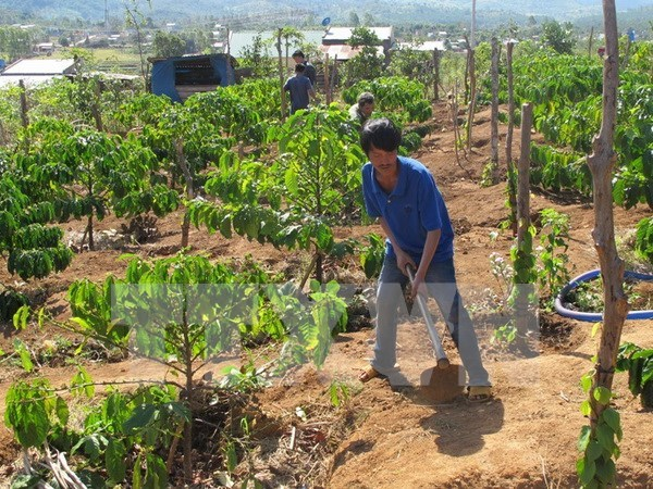 Disadvantaged communes to receive aid from government hinh anh 1